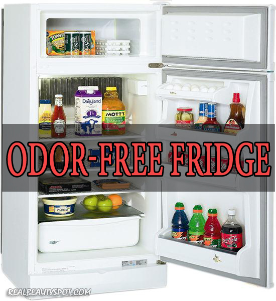 5 Natural Remedies for Odor Free Fridge