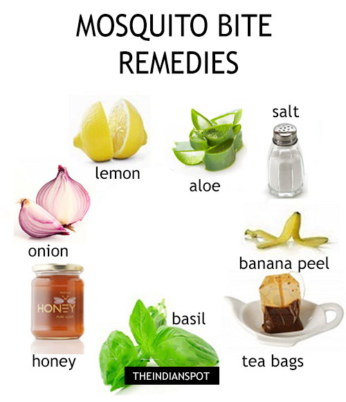 Ease The Itch With 18 Natural Mosquito Bite Remedies The