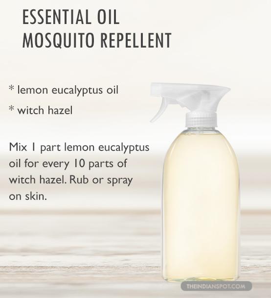 Diy Homemade Natural Nontoxic Insect Bug And Mosquito Spray