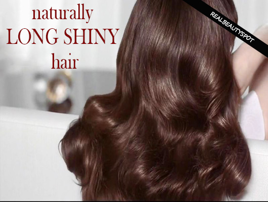 Natural treatments for long shiny hair | THE INDIAN SPOT