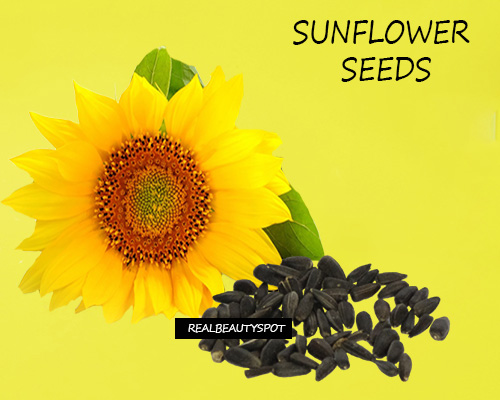 SUNFLOWER SEEDS: BENEFITS AND USES