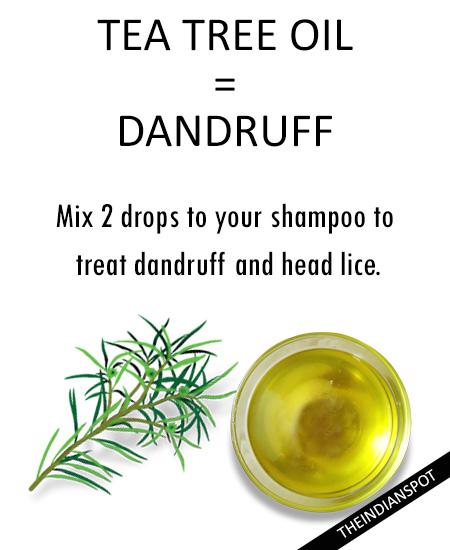 Dandruff - Tea tree essential oil: