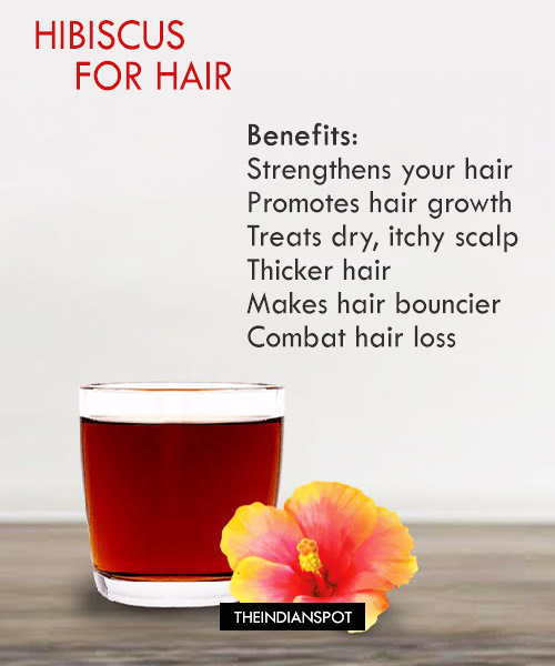 BENEFITS AND USES OF HIBISCUS FOR HAIR - THE INDIAN SPOT