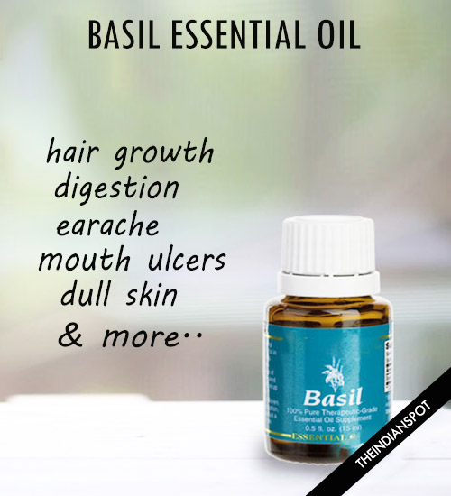 TOP BENEFITS AND USES OF BASIL ESSENTIAL OIL