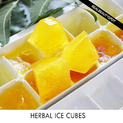 BEAUTY SECRETS FROM HOMEMADE ICE CUBES - herbal ice cubes