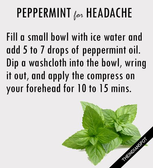 peppermint oil for headache relief