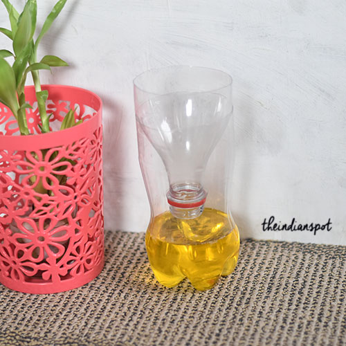 DIY MOSQUITO and FLIES TRAP