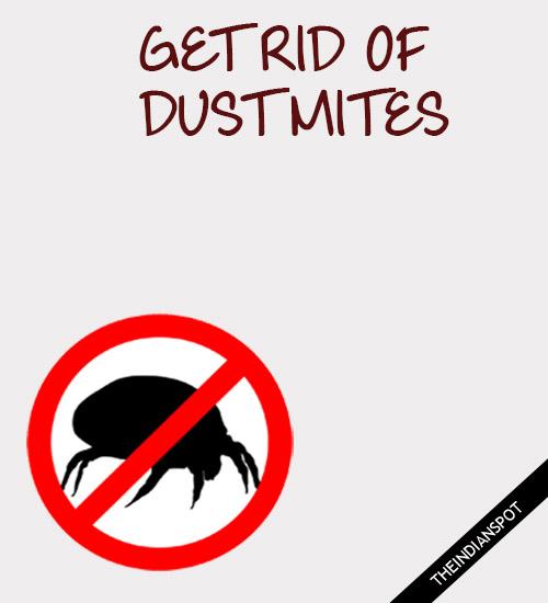 WAYS TO GET RID OF DUST MITES
