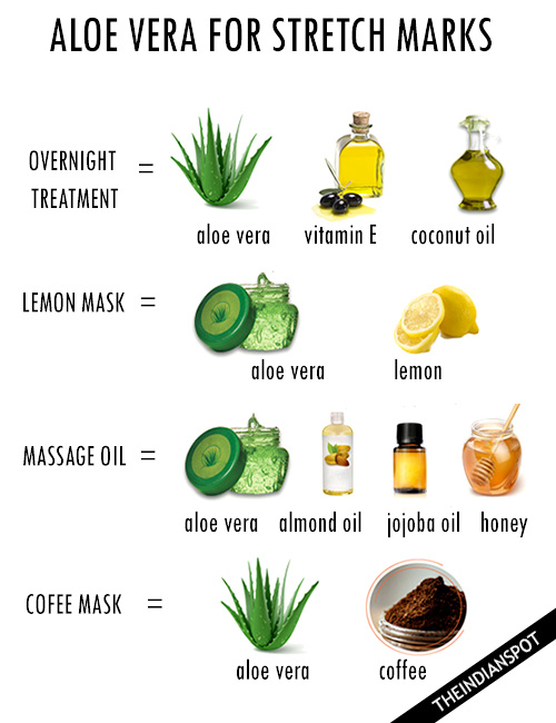 Aloe Vera For Stretch Marks The Indian Spot