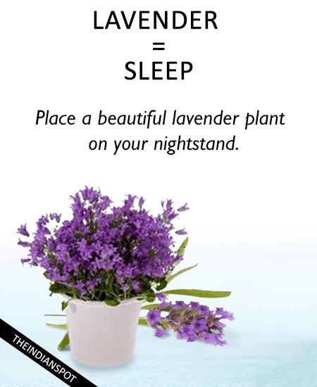 LAVENDER for sleep