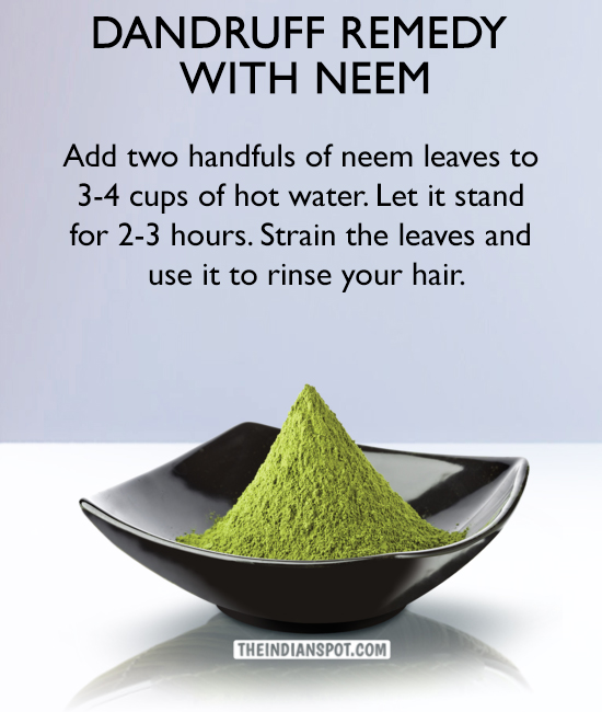 Dandruff Remedy with neem - THE INDIAN SPOT