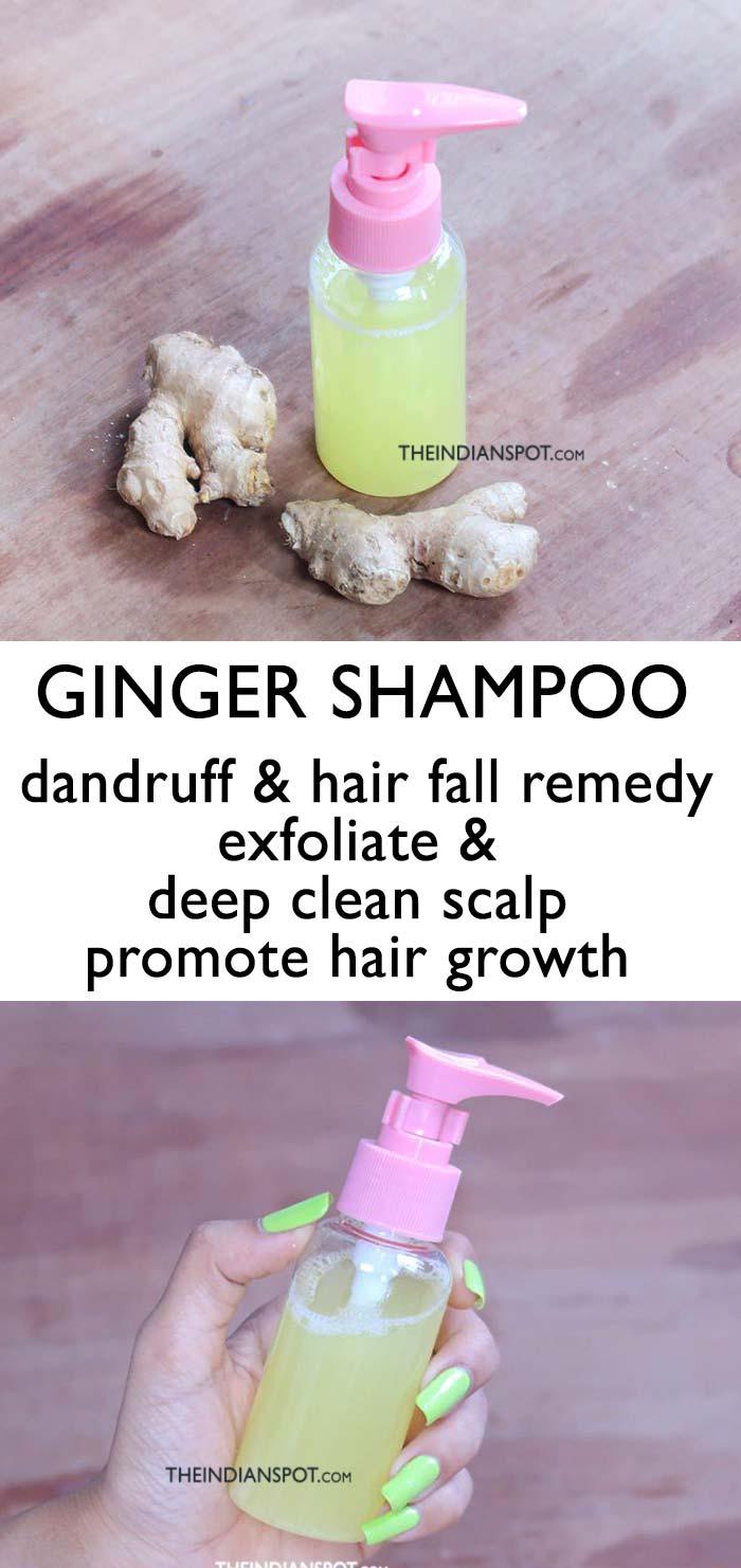 GINGER SHAMPOO FOR DANDRUFF AND HAIR FALL